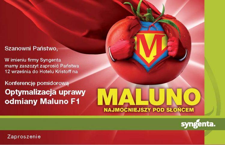 Konferencja pomidorowa - Optymalizacja uprawy Maluno F1